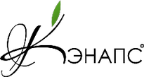 кэнапсы logo