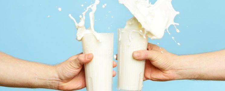 Почему все рекомендуют отказаться от молочных продуктов?